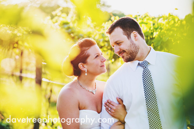 michigan_vineyard_wedding_photographer_davetree_photography_323.jpg