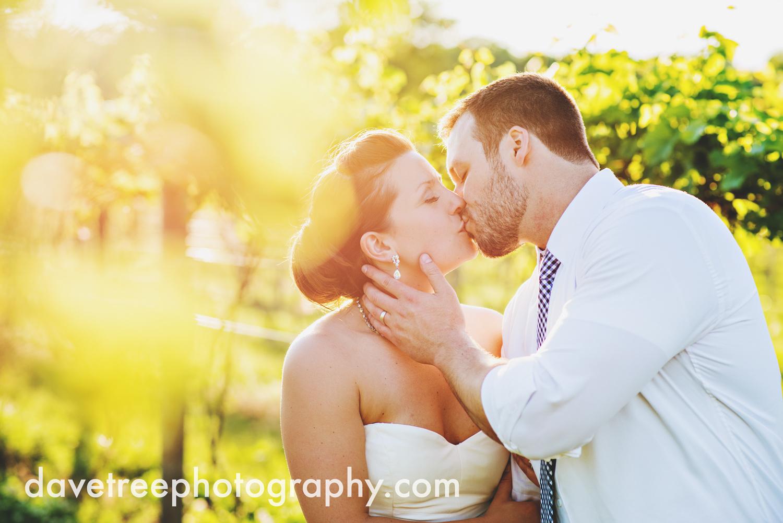 michigan_vineyard_wedding_photographer_davetree_photography_324.jpg
