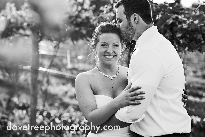 michigan_vineyard_wedding_photographer_davetree_photography_326.jpg