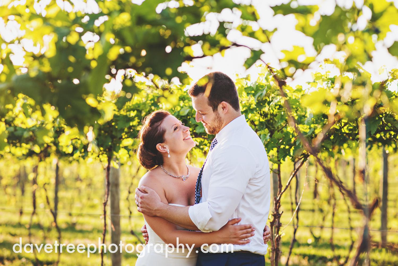 michigan_vineyard_wedding_photographer_davetree_photography_329.jpg