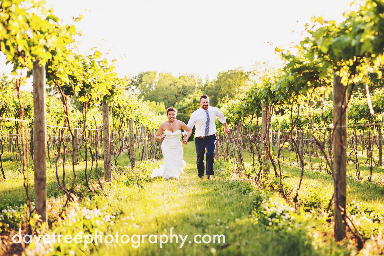 michigan_vineyard_wedding_photographer_davetree_photography_332.jpg
