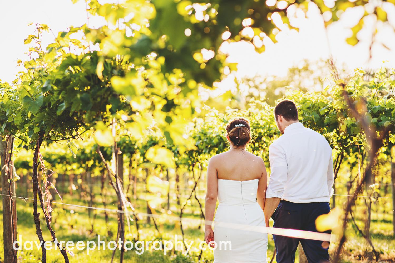 michigan_vineyard_wedding_photographer_davetree_photography_331.jpg