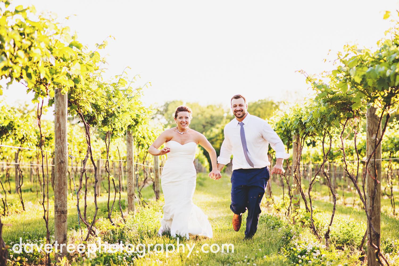 michigan_vineyard_wedding_photographer_davetree_photography_333.jpg