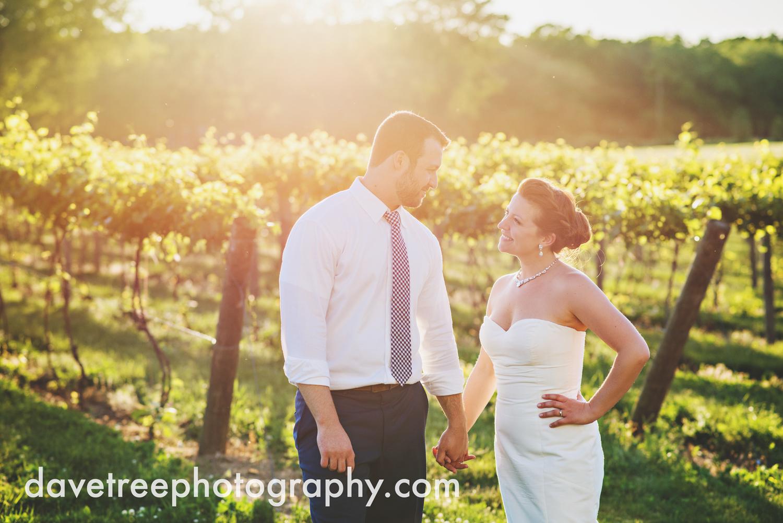michigan_vineyard_wedding_photographer_davetree_photography_337.jpg