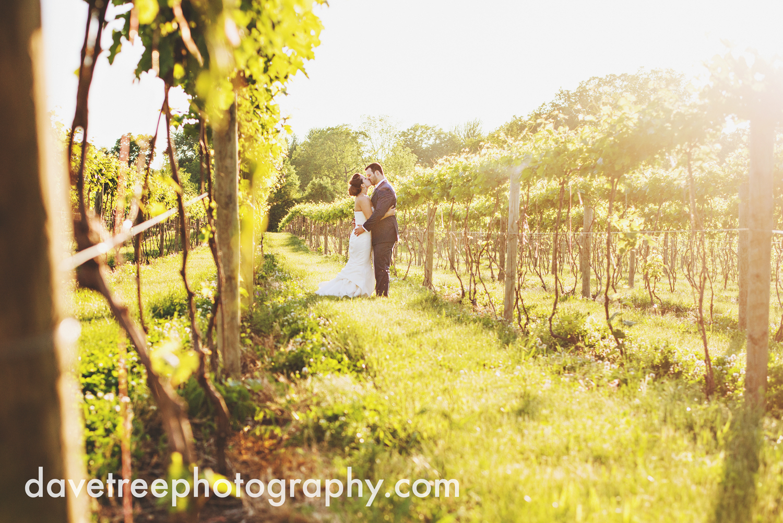 michigan_vineyard_wedding_photographer_davetree_photography_349.jpg