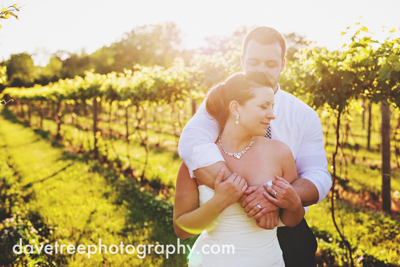 michigan_vineyard_wedding_photographer_davetree_photography_350.jpg