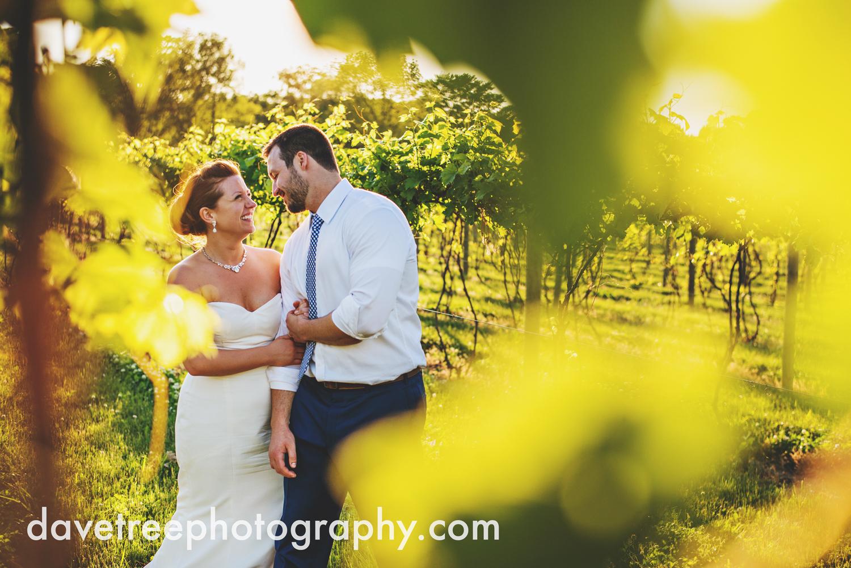 michigan_vineyard_wedding_photographer_davetree_photography_352.jpg