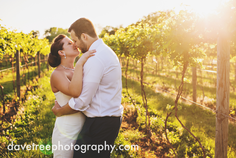michigan_vineyard_wedding_photographer_davetree_photography_354.jpg