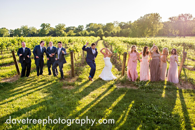 michigan_vineyard_wedding_photographer_davetree_photography_494.jpg