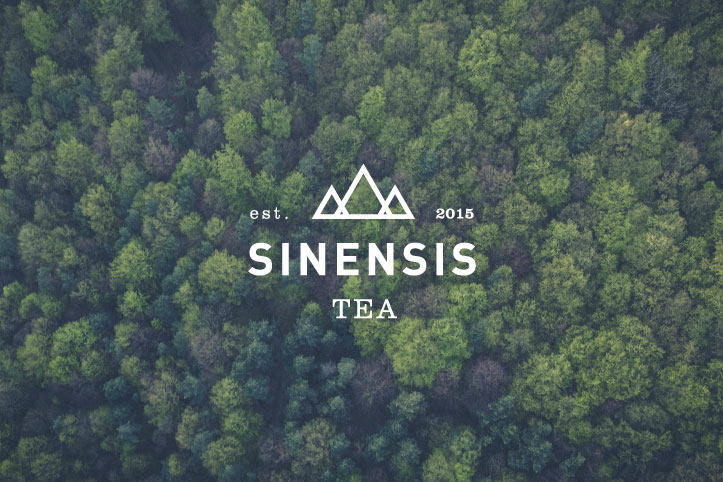 Sinensis-Tea-1st-Web.jpg