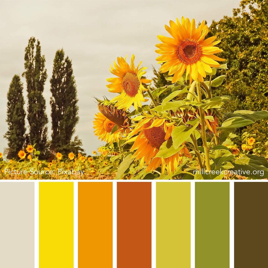 Sunflower Color Palette | Mill Creek Creative