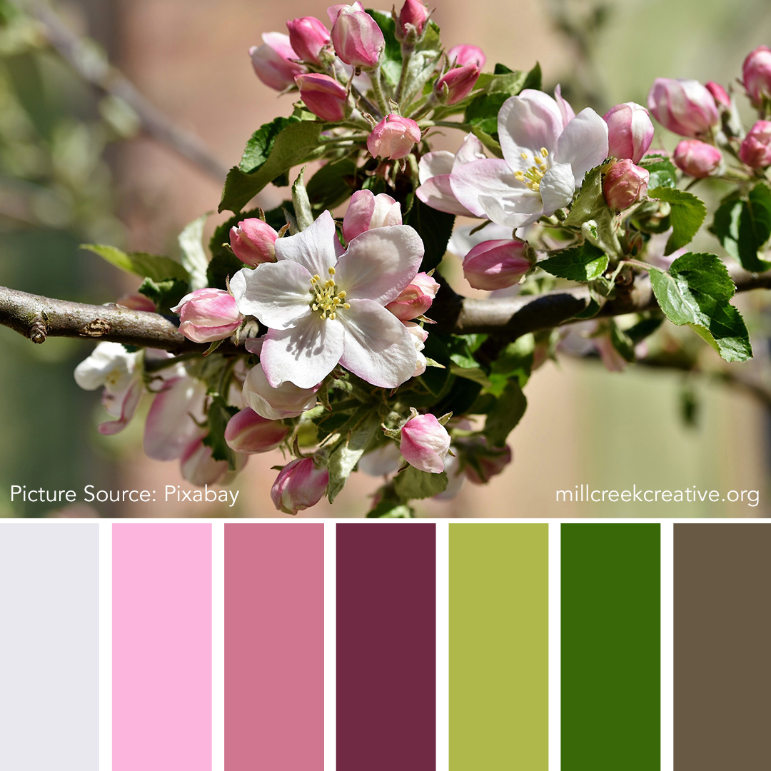 Apple Blossomed Trees | Color Palettes for Design Inspiration | Mill Creek Creative
