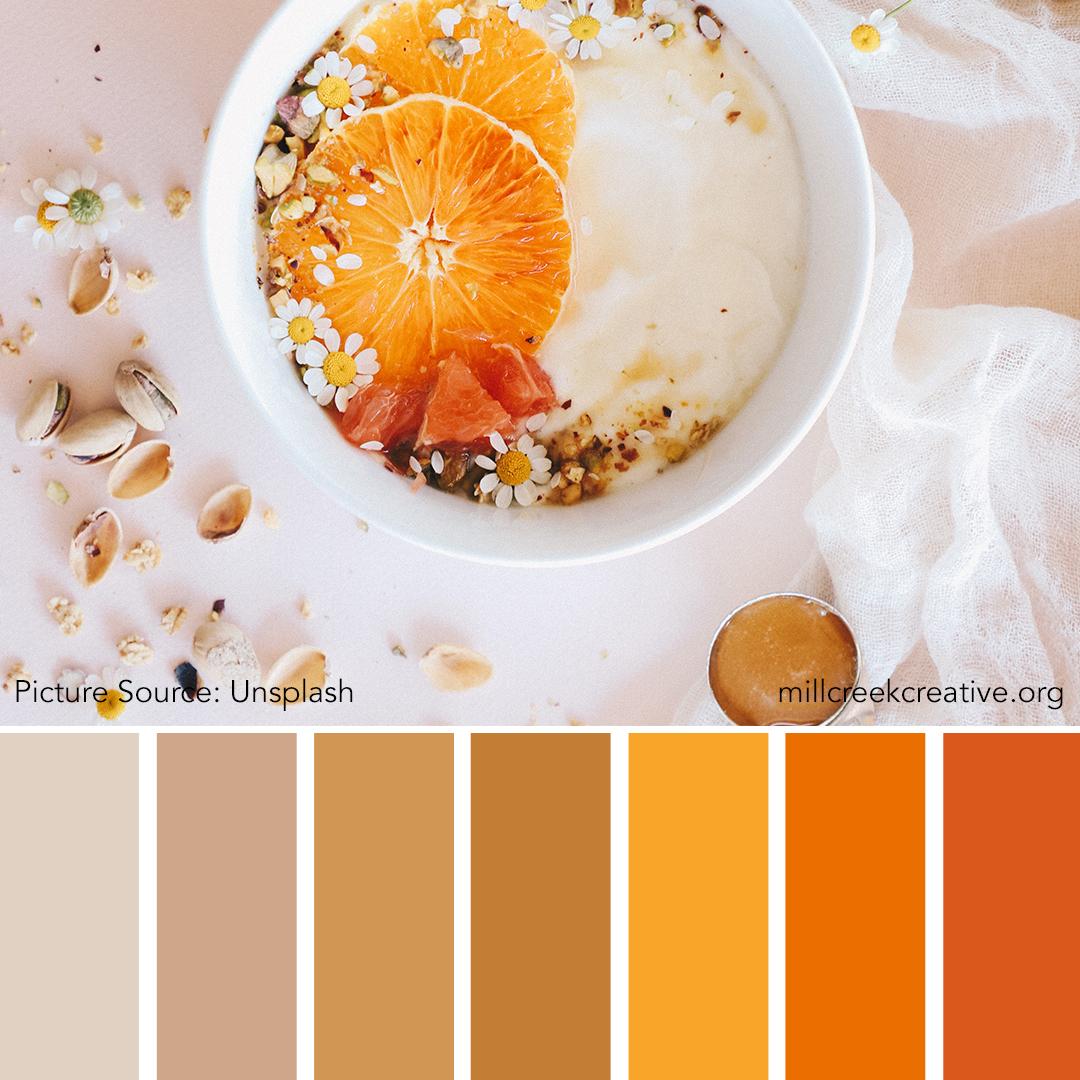 Orange and Cream Color Palette | Color Palettes for Design Inspiration | Mill Creek Creative