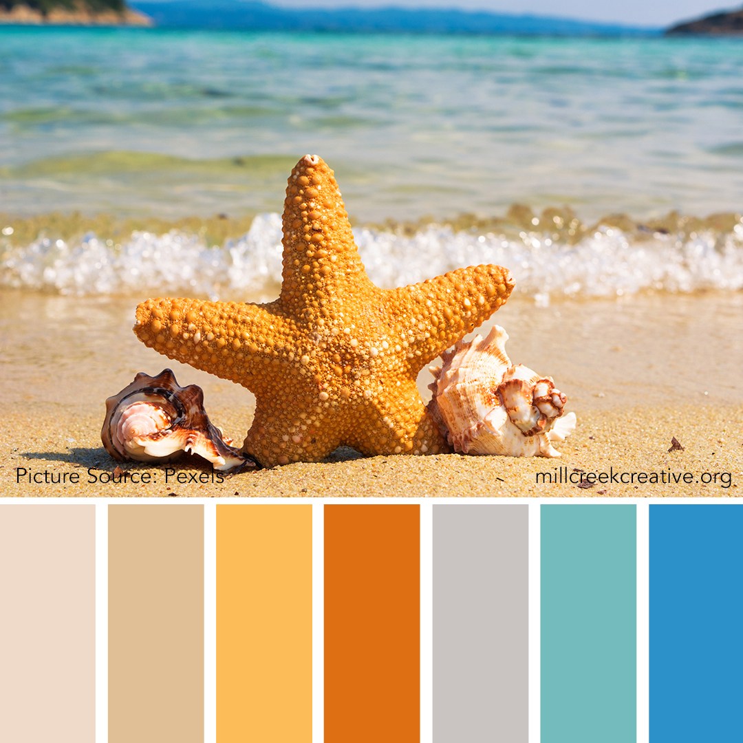 Starry-Beach.jpg