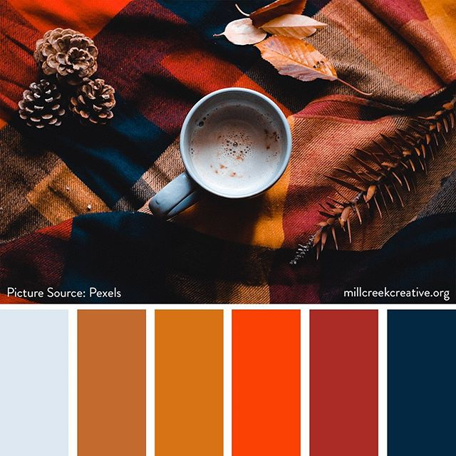 Color Palette: Cozy Coffee (Photo source: @pexels)  #color #colorpalette #design #graphicdesign #designinspiration #fall #autumn