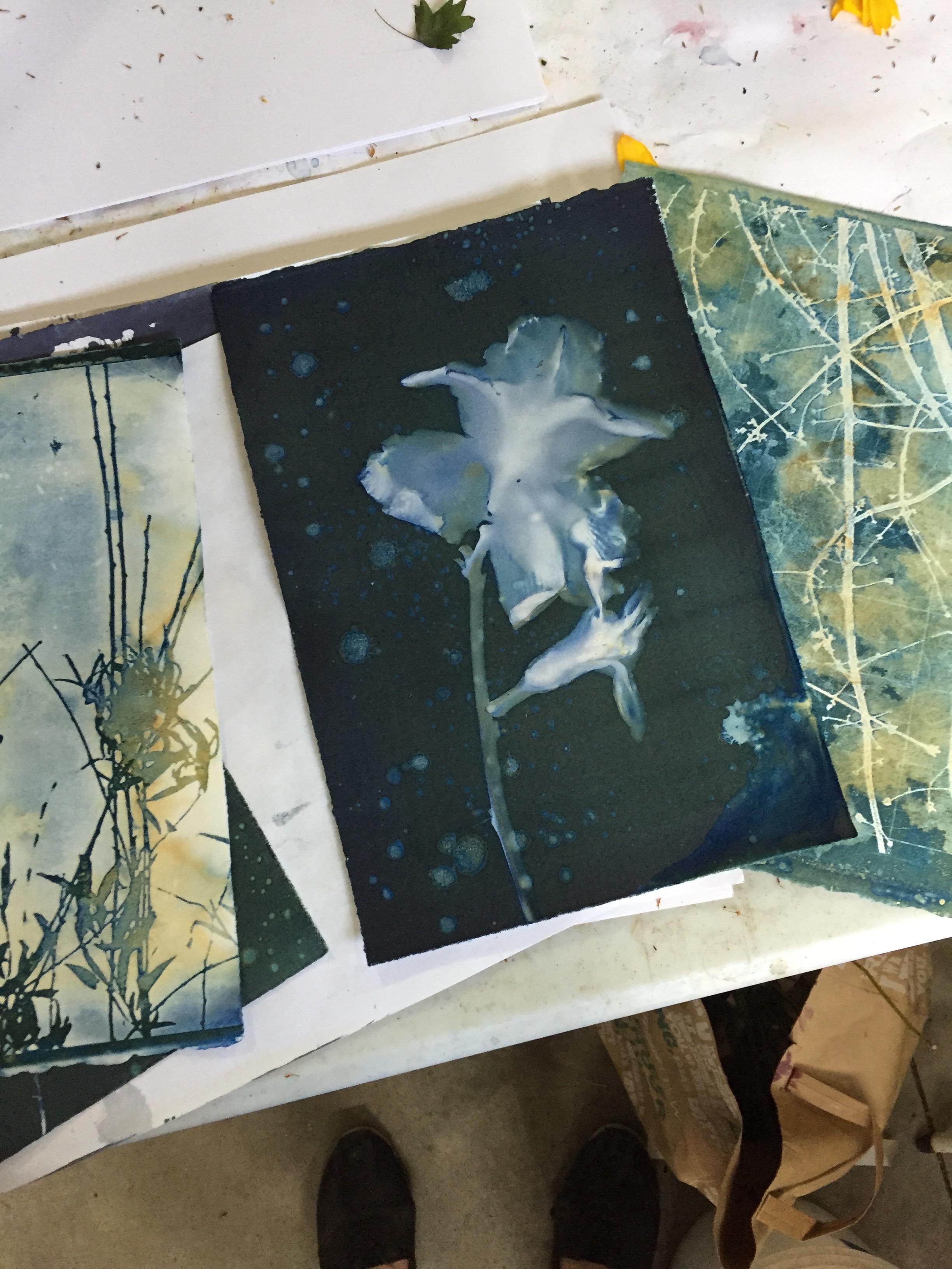 A few of the wet cyanotypes created last weekend