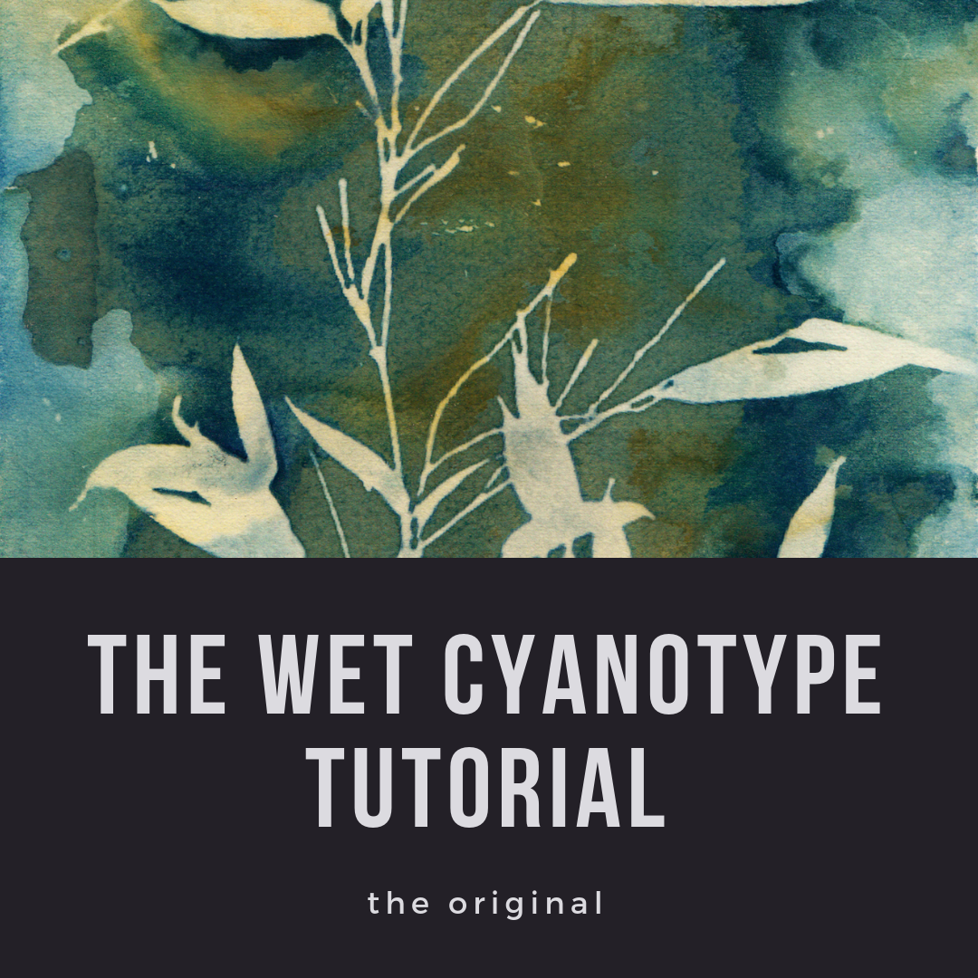 Wet Cyanotype Tutorial