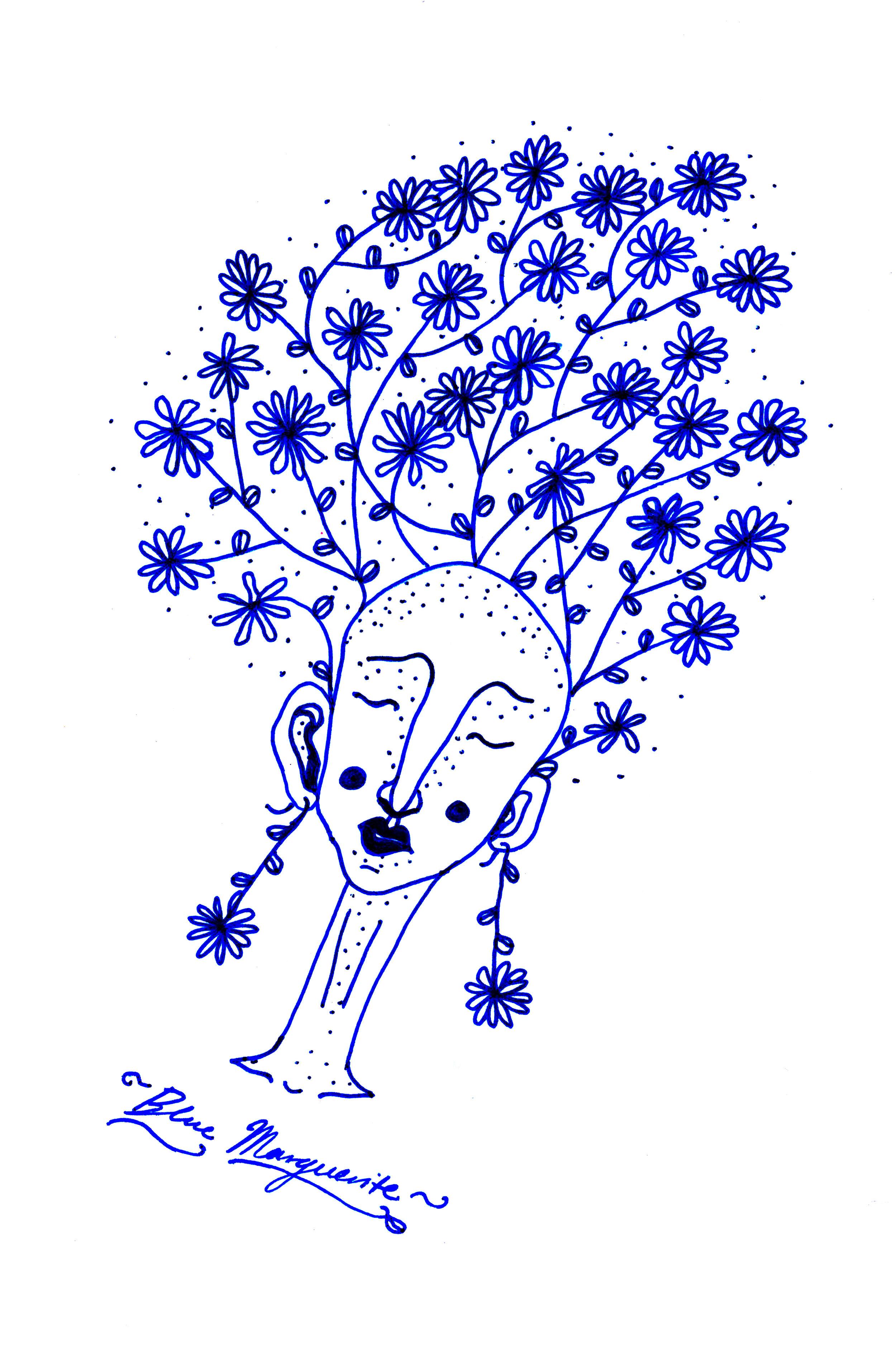 Blue Marguerite
