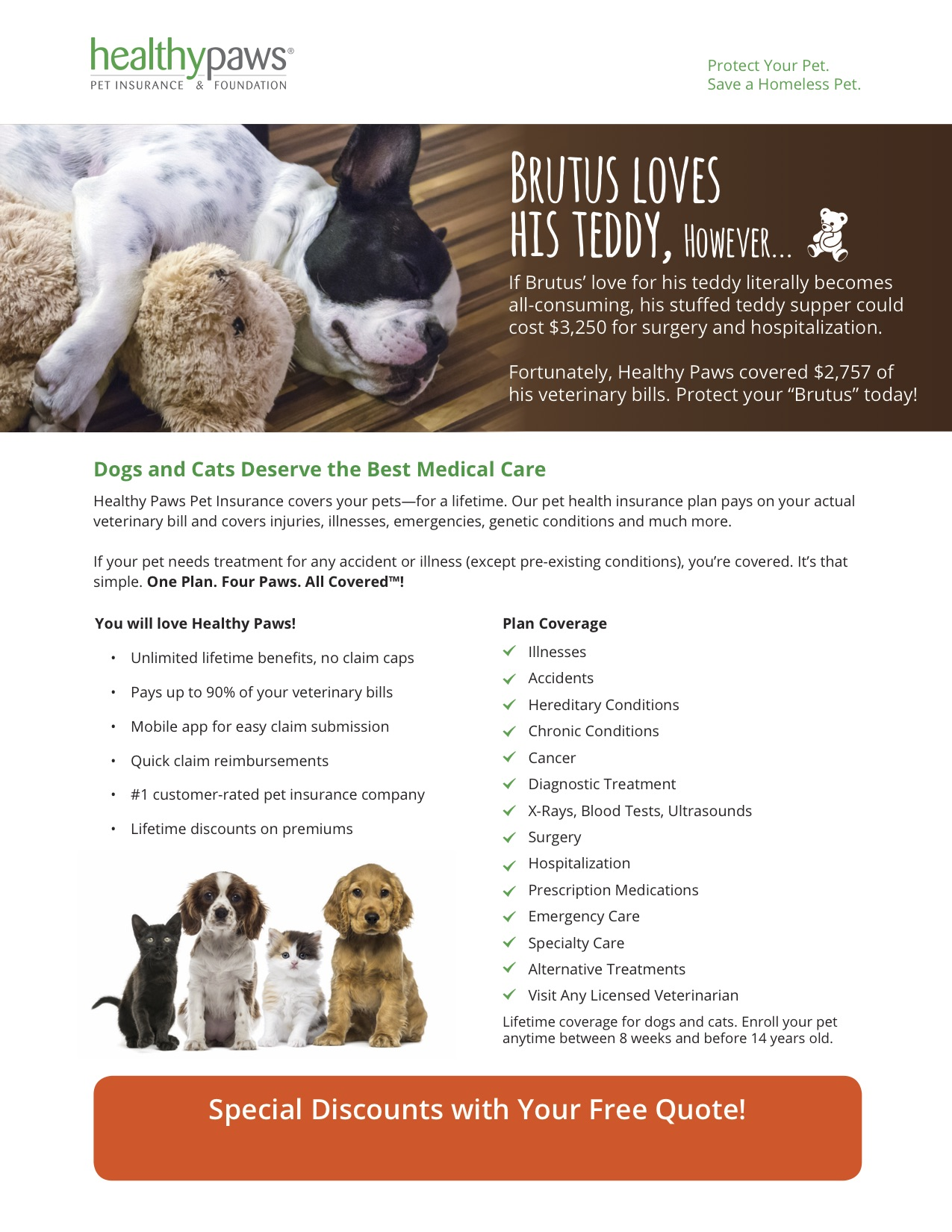 Click to get your free Healthy Paws Pet Insurance quote