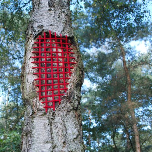Hannah Streefkerk,  Mended Tree  (detail) 1 of 5 trees repaired with red rattan pieces, 2013