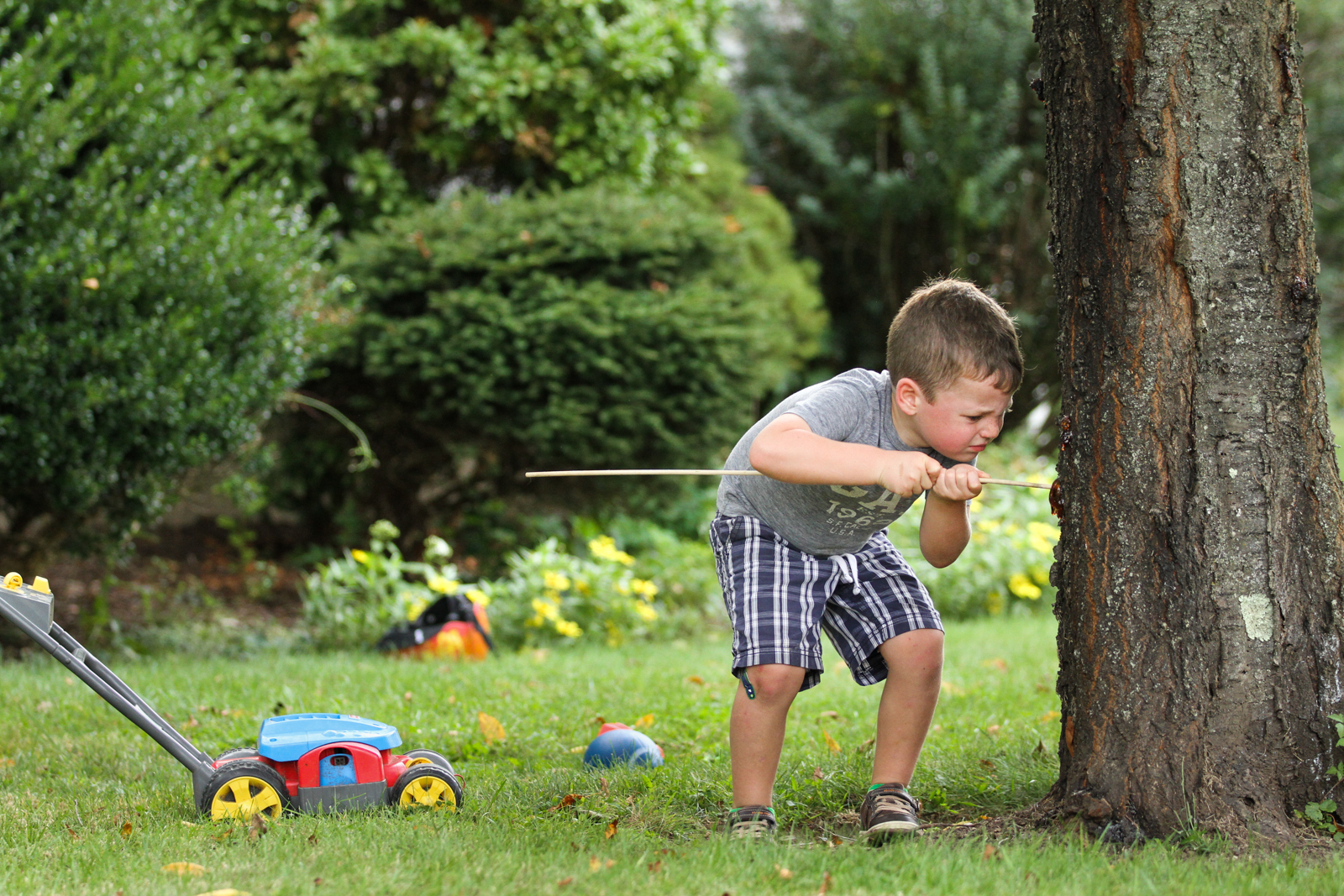 Boy pushes large stick into tree trunk