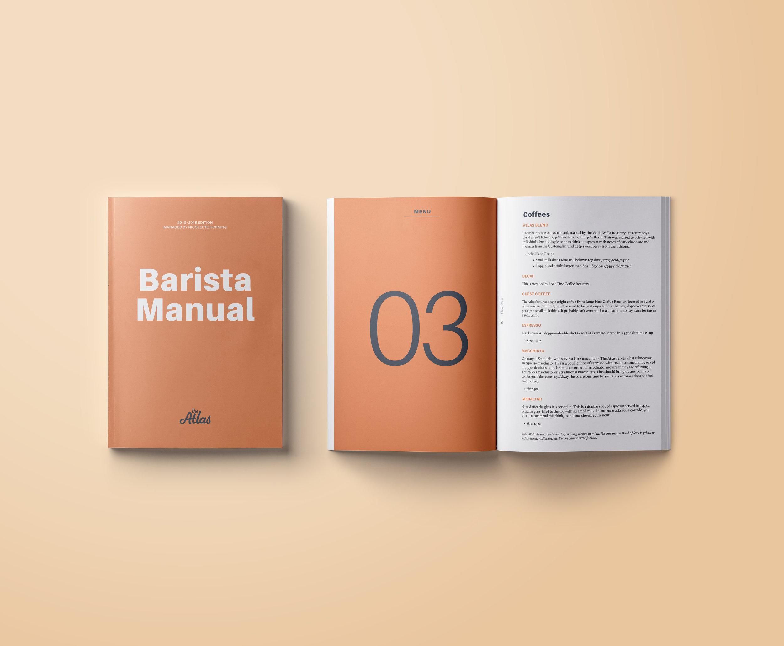 Handbook mockup2.jpg
