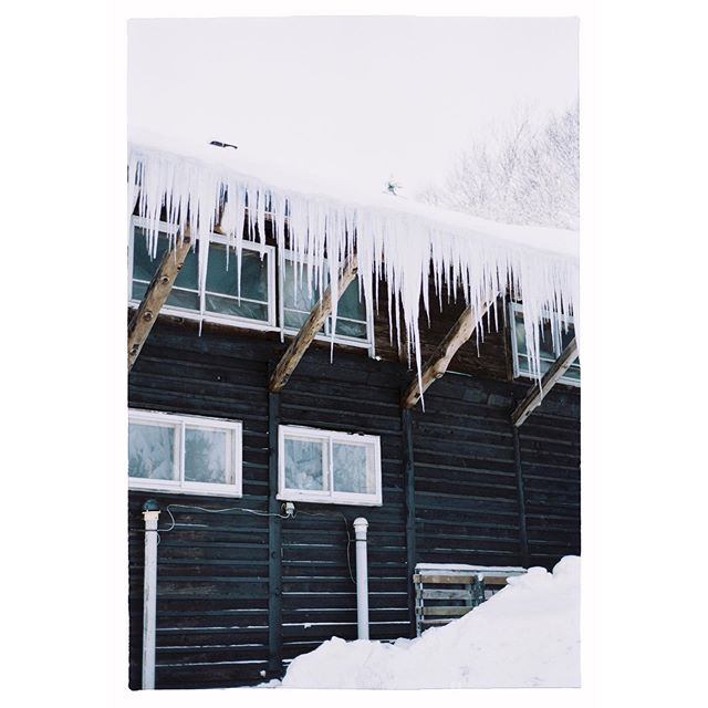 Icicles. - Niseko, Japan - Nikon F3 . . Email or DM for bookings + See more at www.dylanbow.com . . . . . . . . #35mm #film #35mmfilm #photography #filmphotography #filmisnotdead #フィルム #filmcommunity #shootfilm #ishootfilm #shoot2kill #analogphotography #filmphotographic #shotonfilm #filmphoto #nikon #nikonf3 #fujifilm #fujisuperiaxtra400 #ishootfujifilm #snow #streetphotography #japan #winter #travelphotography #nophotoshop #racquetstudio #dylanbow #analog #analogue @fujifilm_profilm