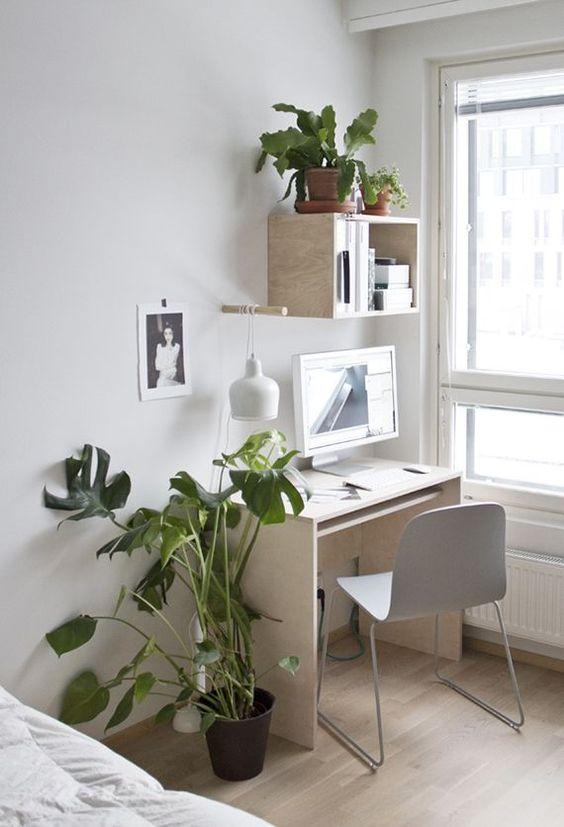 Bohemian office