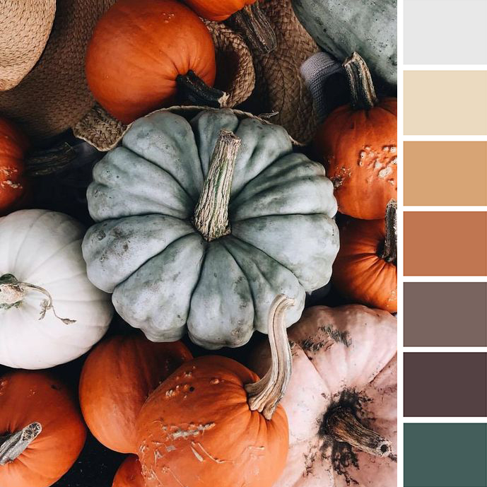 poke_studio_colour_palette