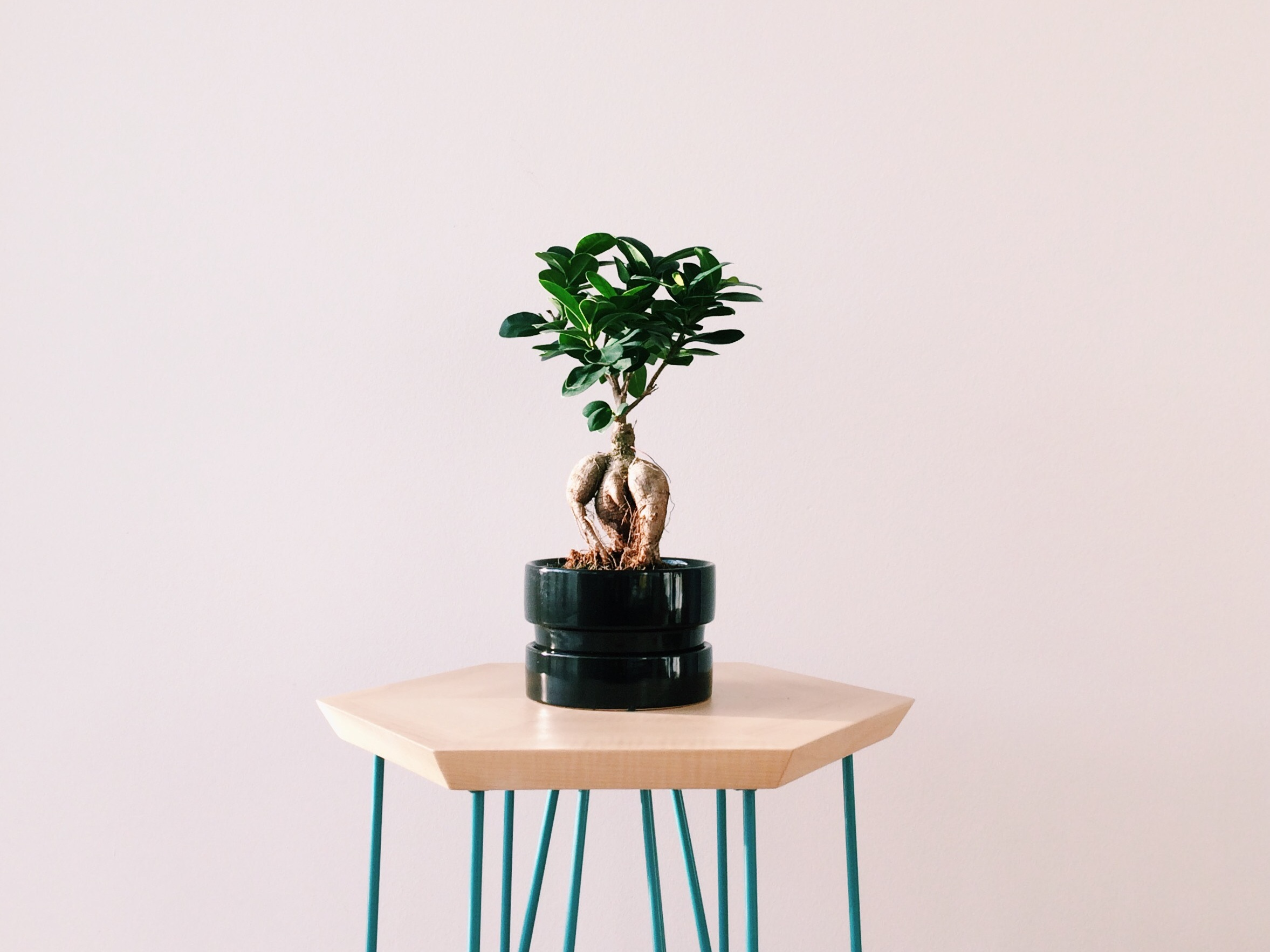 ESENEL - bespoke furniture