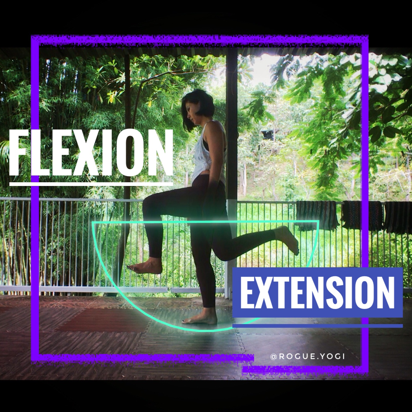 online_yoga_beginners_flexion_extension_knees.jpg