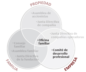 services_ownershipcontinuity_sp_empresa.jpg