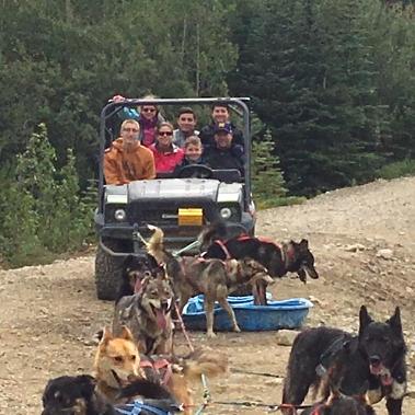 Dog Sledding Alaska.jpeg