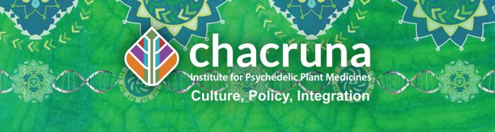 banner-who-we-are-chacruna.jpg