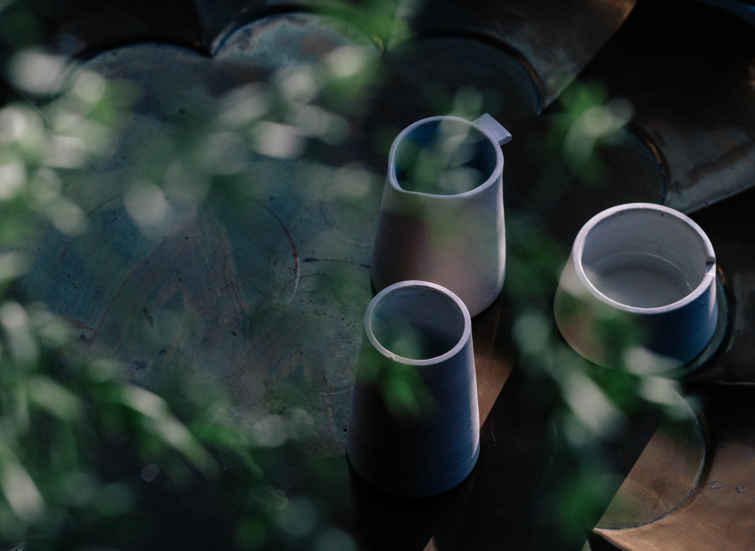 jono smart and green plant.jpg