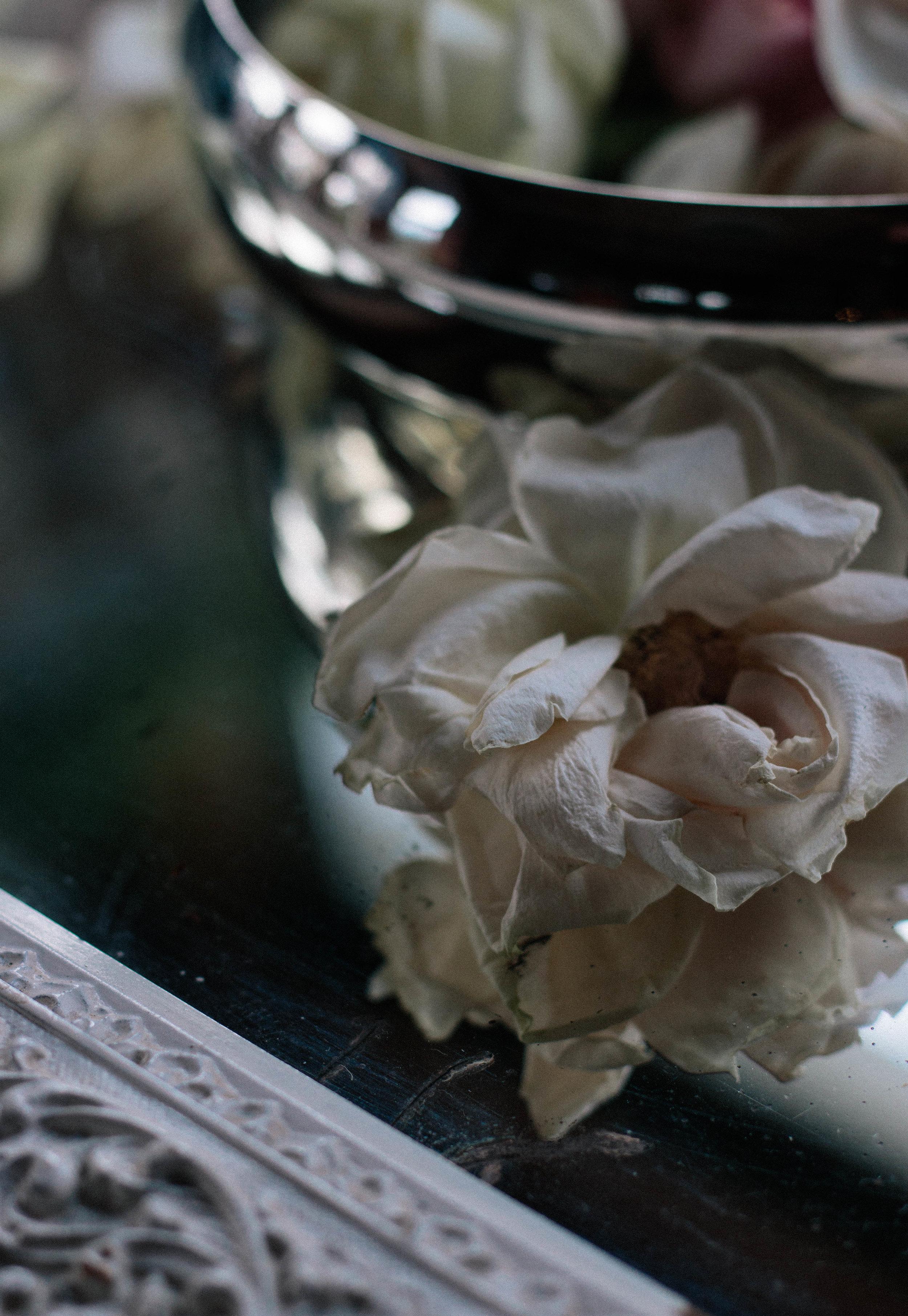 roses_.jpg