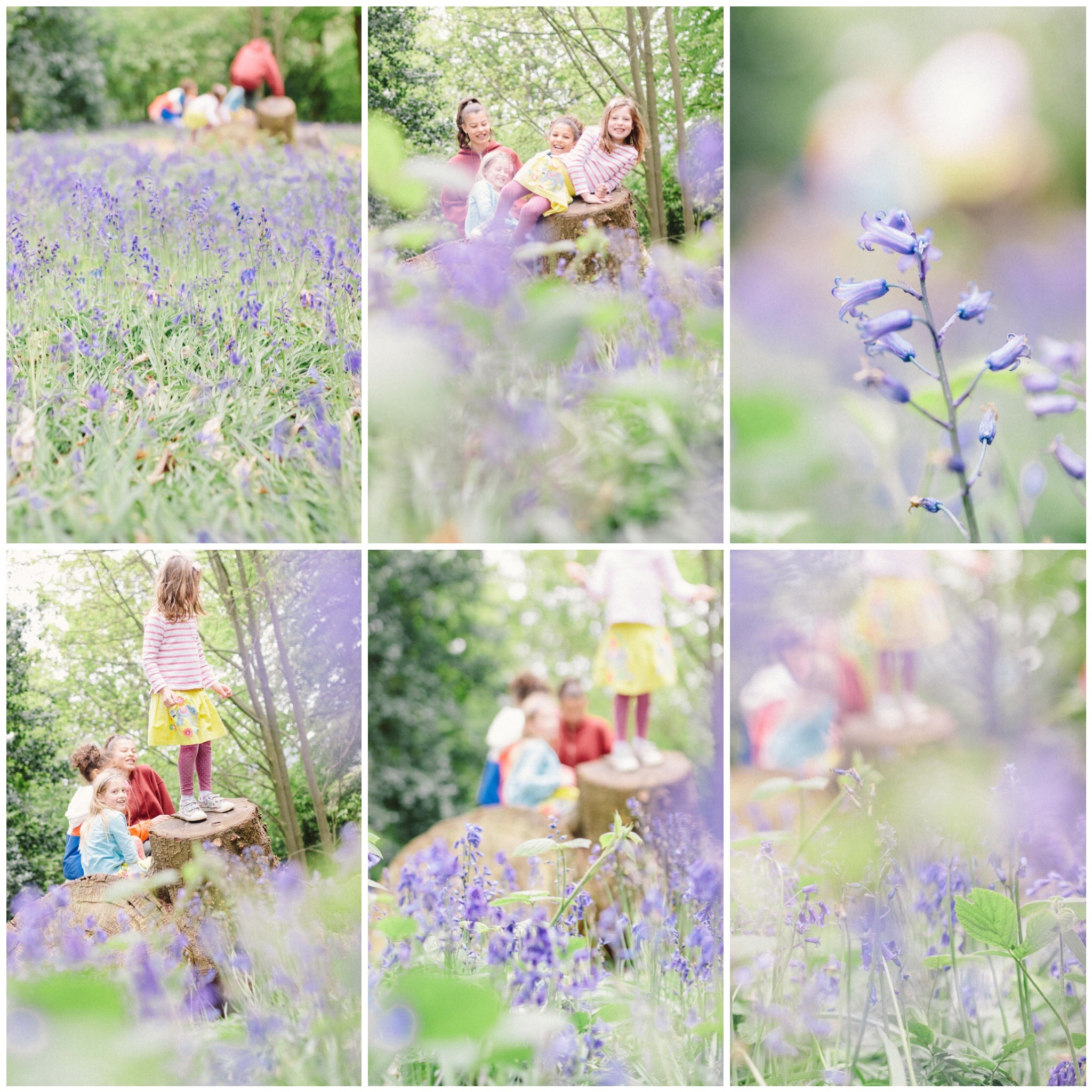 london family photographer bluebell shoot greenwich lavender.JPG