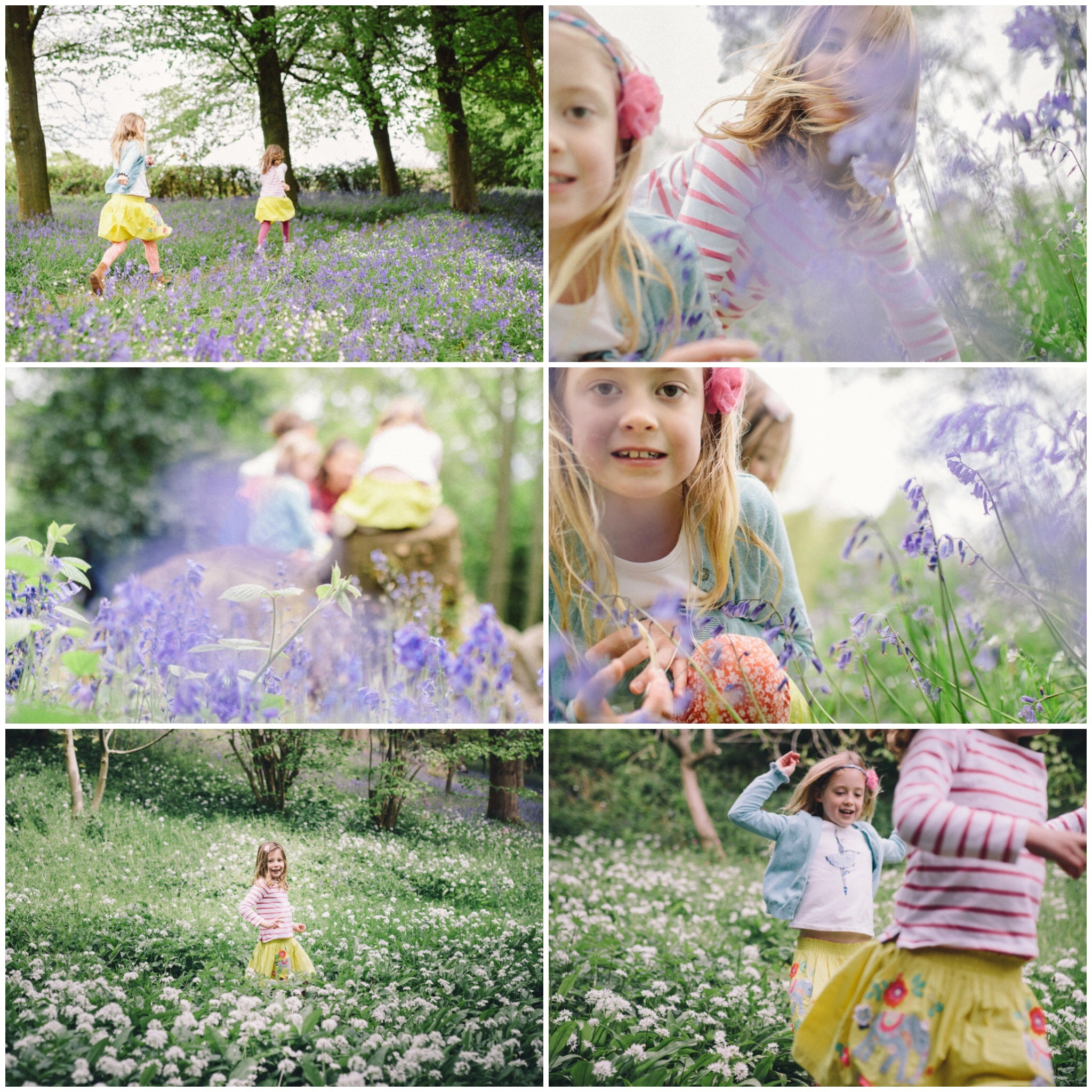 london family photographer greenwich bluebell shoot lavender.JPG