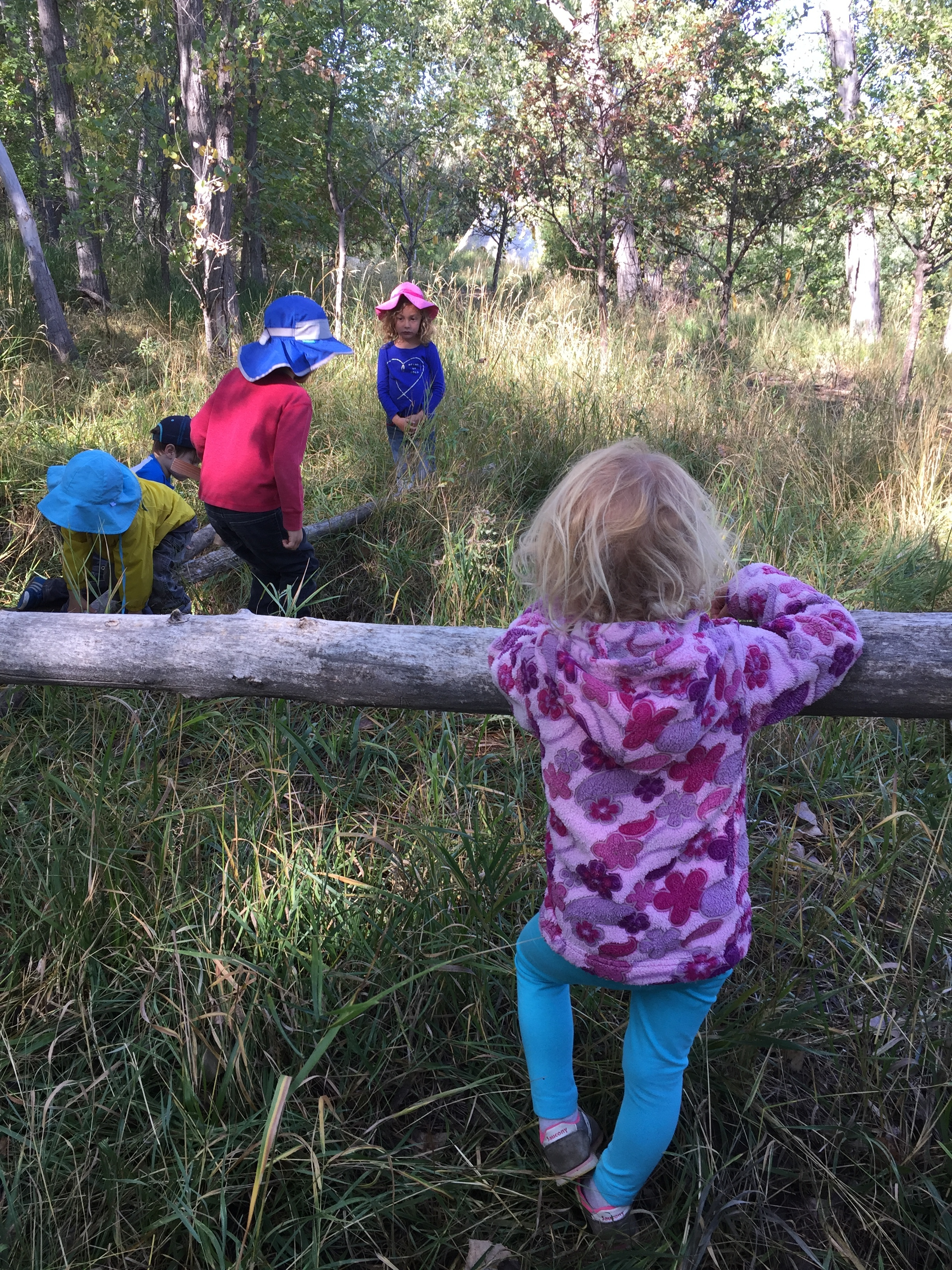Watching each other and learning about the land are what our first weeks are all about.