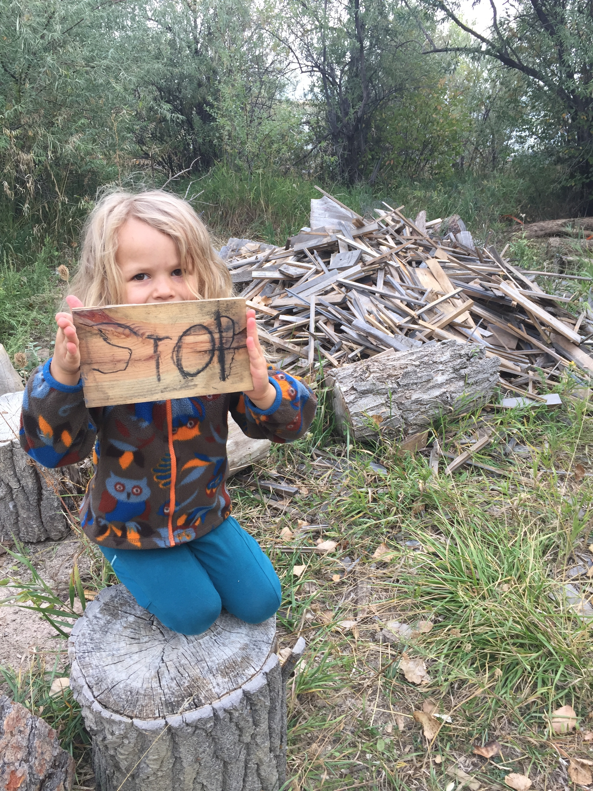 There isn't much you can do indoors that you can't do outdoors! We even have early literacy going on in the forest. The kids enjoyed making stop signs one morning using wood scraps and charcoal. The tricky part was attaching the sign to a post.