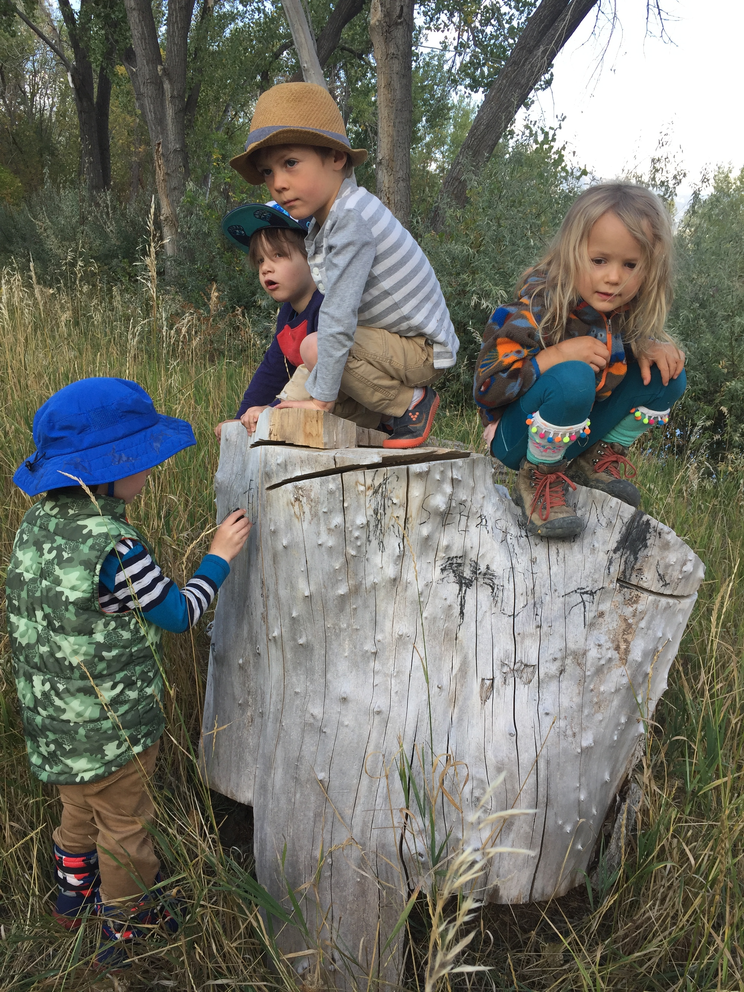 The kids were so impressed when one friend wrote his name on this stump that they all added theirs.