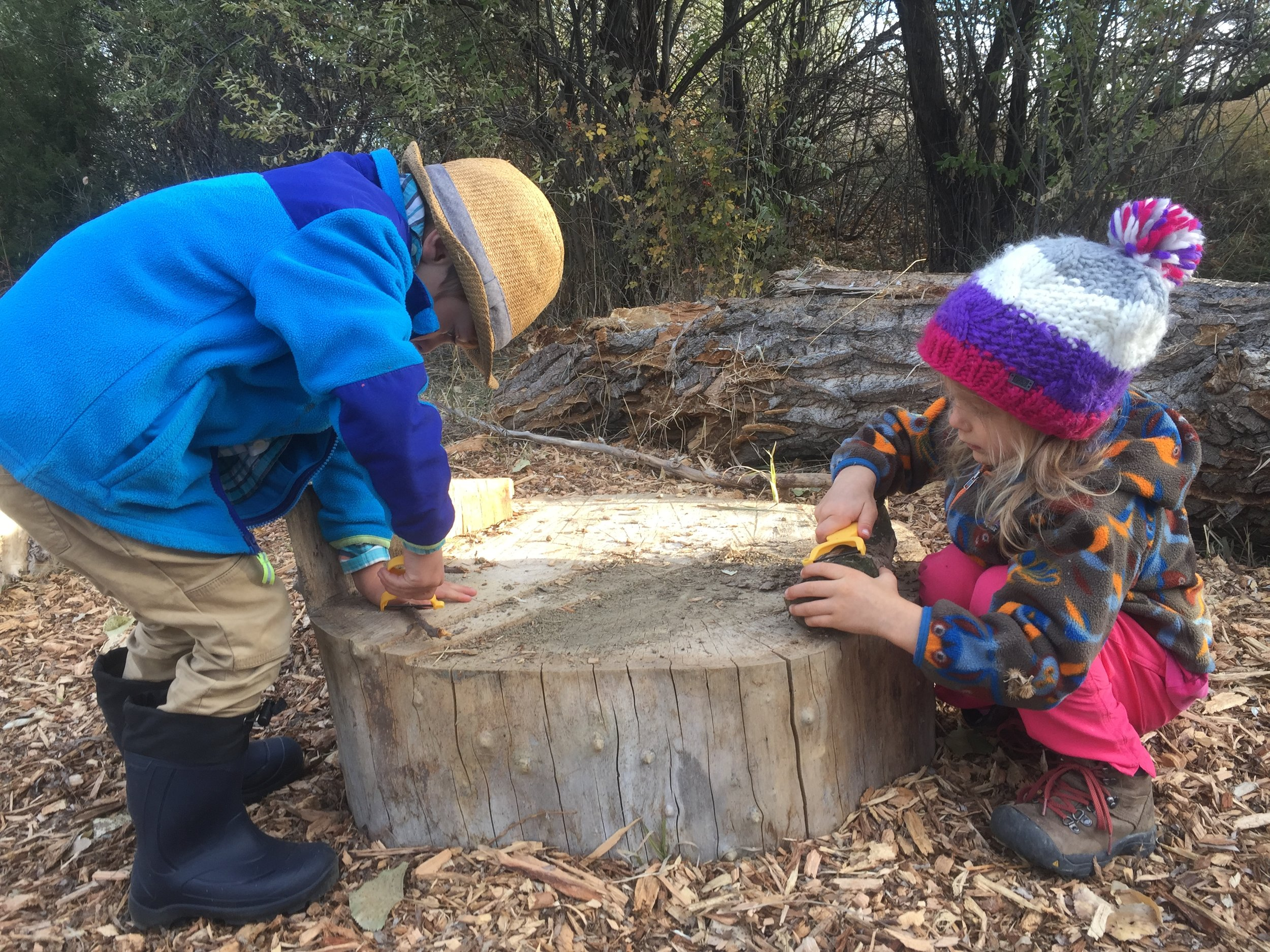 Whittling has begun! Many of the children have been interested to try peeling a stick with a veggie peeler. They have been very responsible about using the peelers safely. It is exciting to see the beautiful swirls of color under the bark.