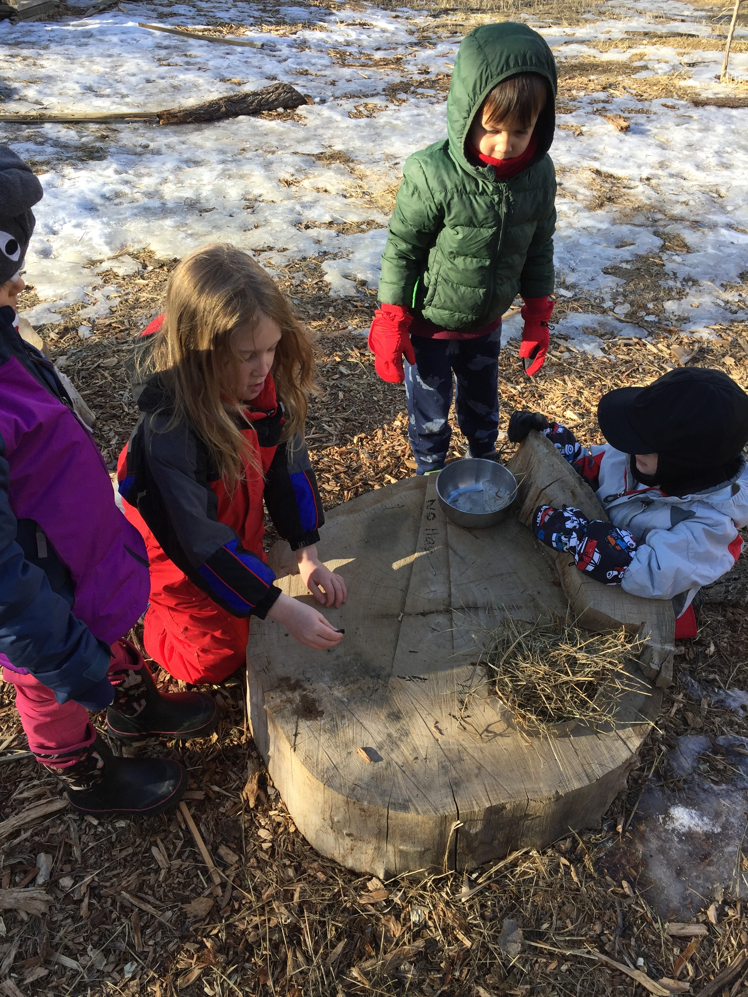"""Nature invites inquiry: these children wanted to melt some ice, and wondered if piling hay on top would help it melt faster. With a little help in the form of a question—""""how will you know if it melted faster?""""—they soon had a controlled experiment. One of our dear """"big kids"""" was excited to label the experiment with a piece of charcoal and even tallied votes for their hypotheses. The kids concluded that the hay made the ice last longer and some came up with the reason: """"I think the ice kept the cold air trapped!"""" Hooray! We have invented a primitive freezer."""