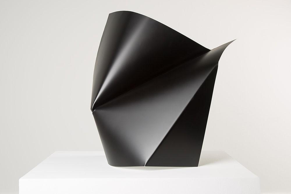 Alyson Shotz. Black Folds (1)