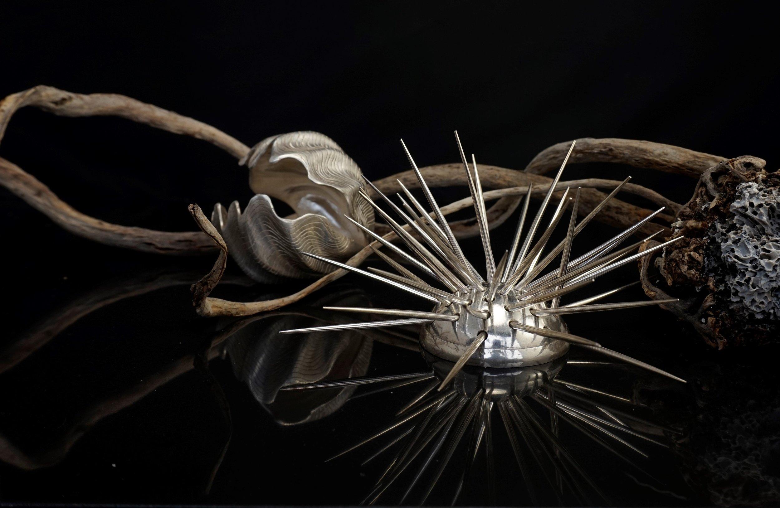 Serena Bartok | Sea Urchin and Clam Shell