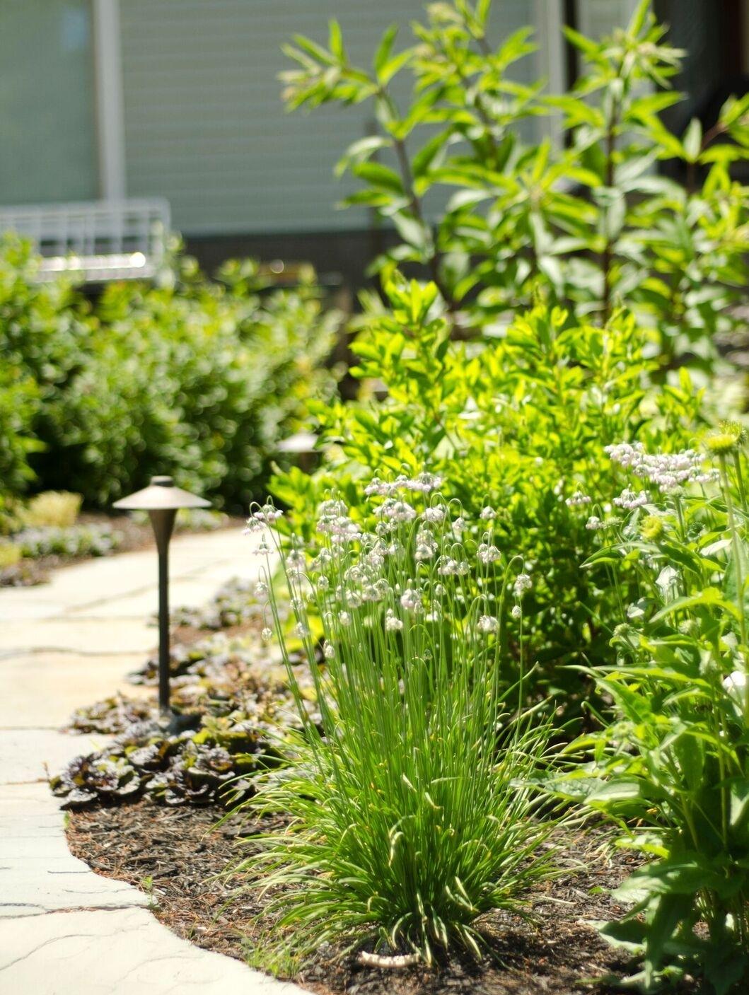 falmouth retreat garden