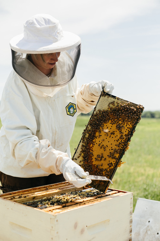 Michaela with Bee Brood. Image by Ethan Harrison