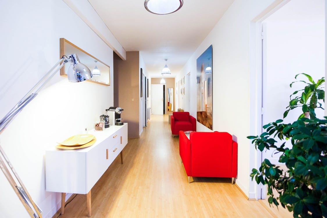 design-interior-plant-lamps-73382.jpeg