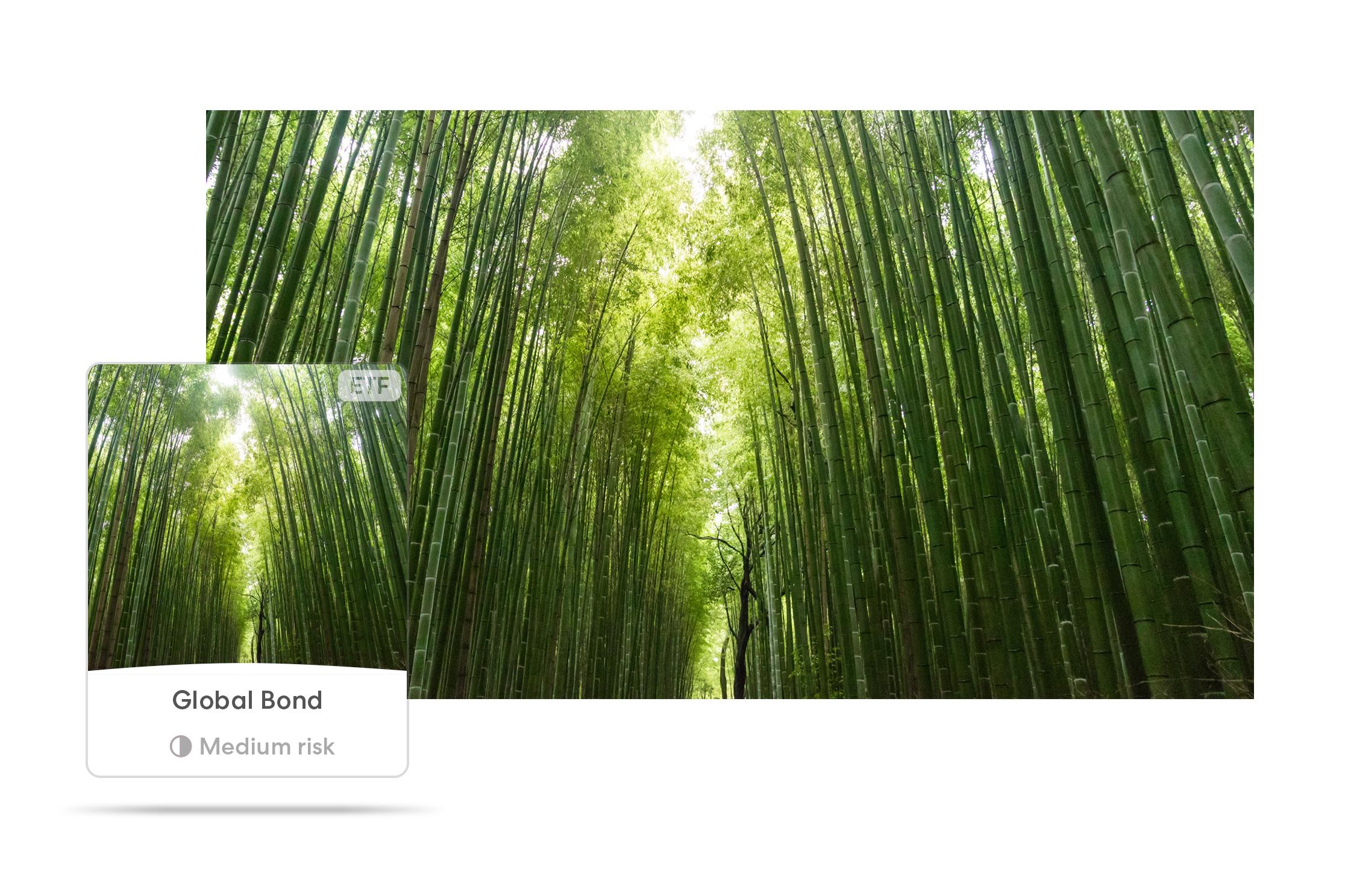 Global_bond.jpg