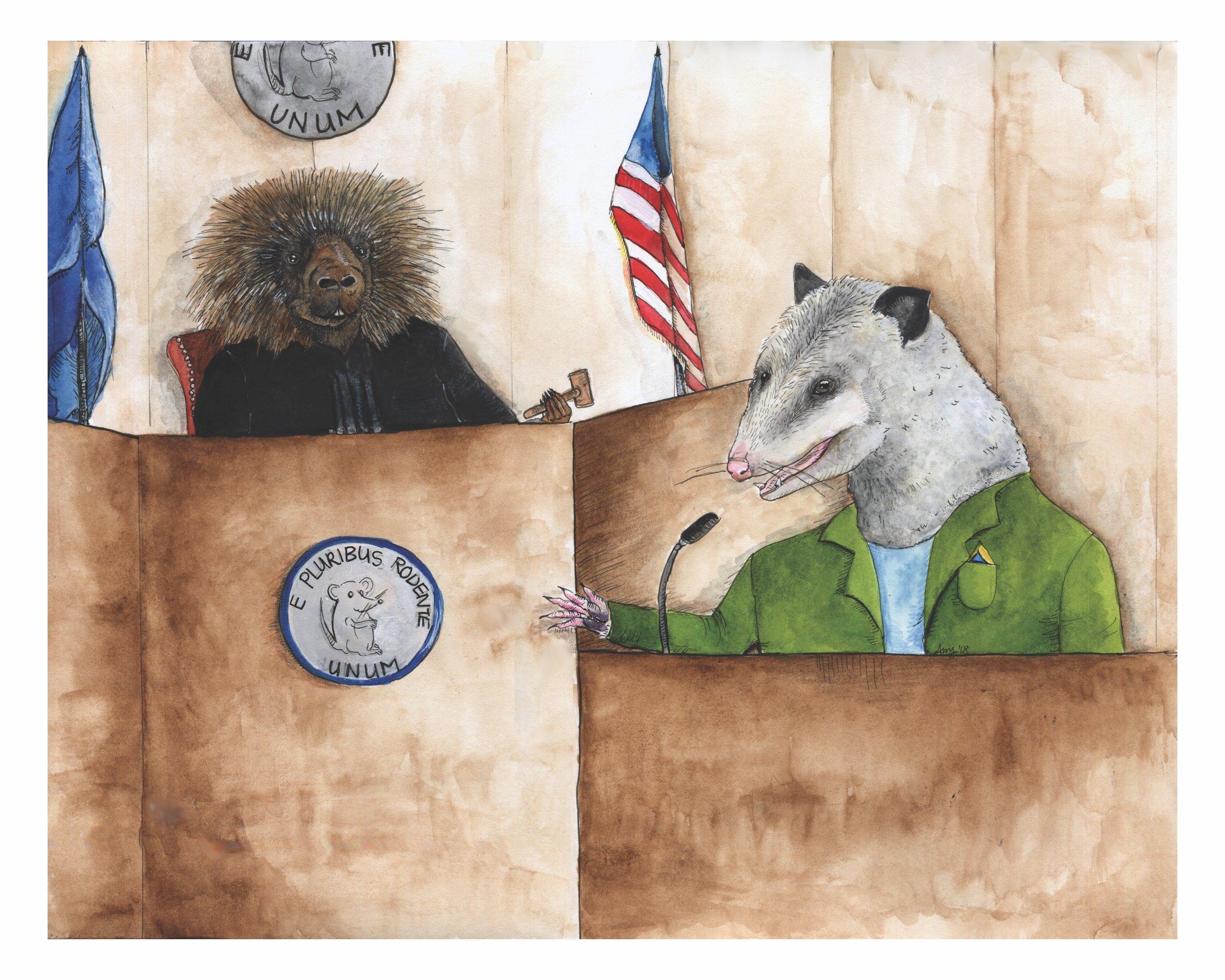 The Trial of Cecil O'Possum